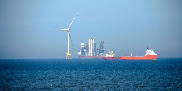 Hydrocarbon Renewable Nexus